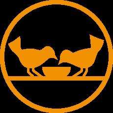 Bank Żywności